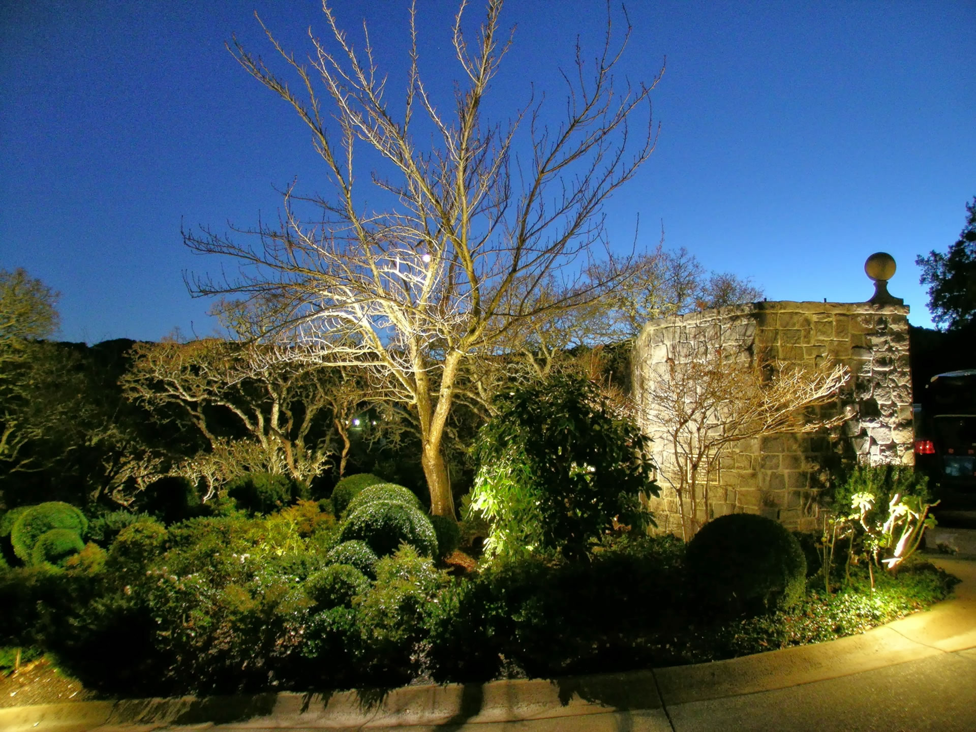 Landscape Lighting Led Conversion : Alamo led landscape lighting conversion by artistic illumination