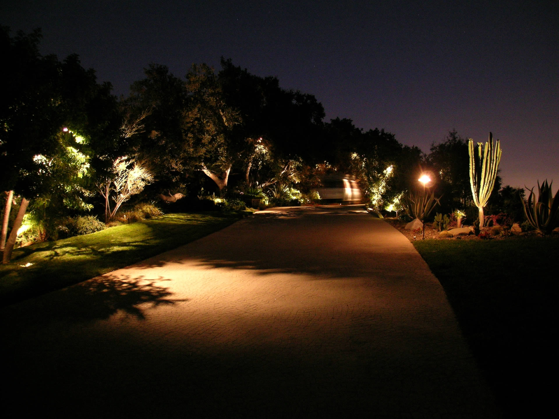 Outdoor Landscape Lighting Professional : Vista professional outdoor lighting pictures to pin on